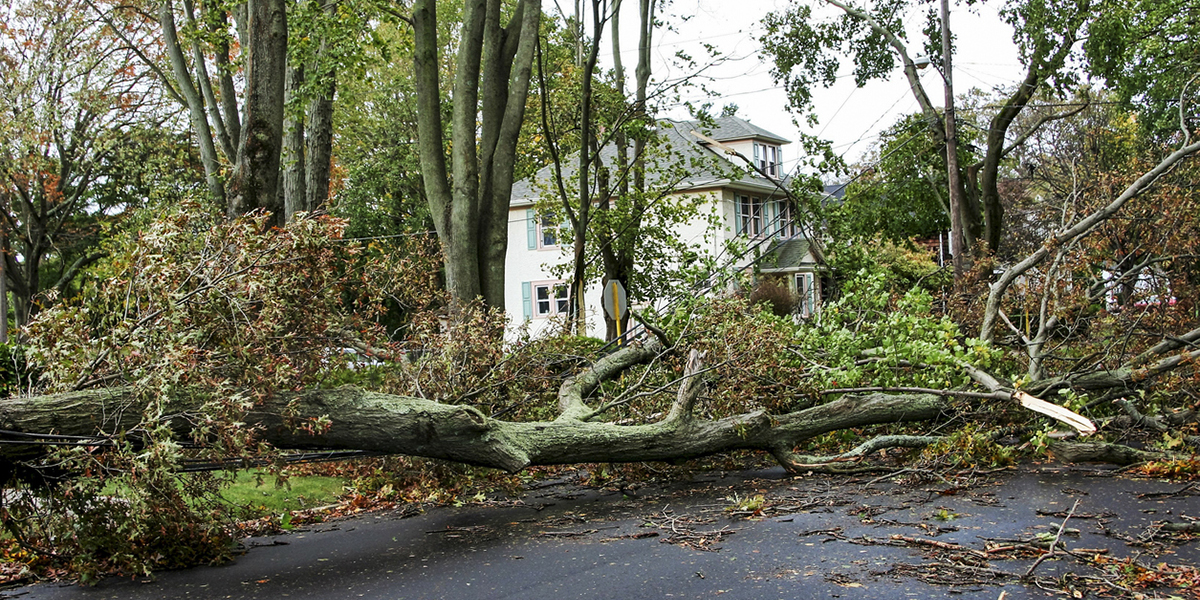 storm damage recovery services in ct